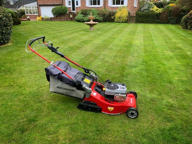 Best Features To Consider In a Rear Roller Electric Mower