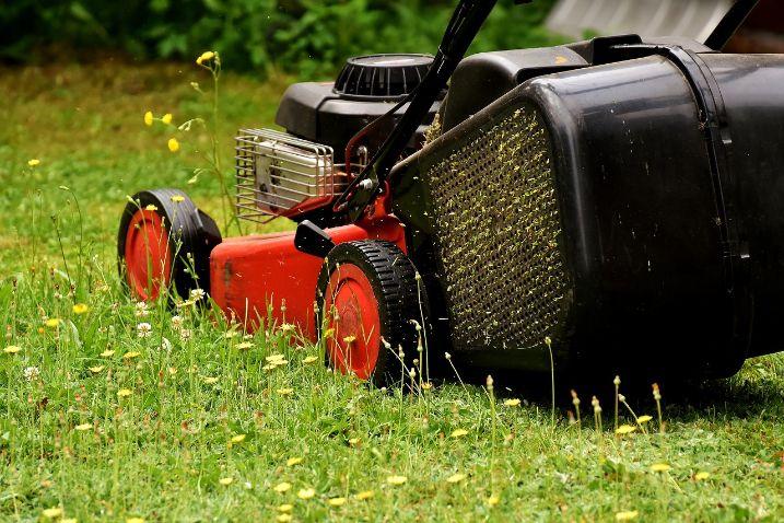 What Is a Rear Roller Lawnmower