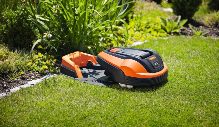 Is Lawnmower Theft a Thing