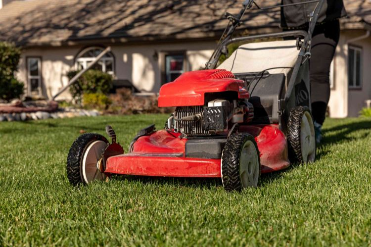 What Is The Average Lifespan Of a Mower